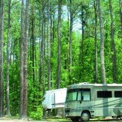 Birchwood R V Park - Durham, NC - RV Parks