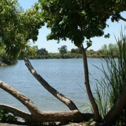 Guajome Regional Park - Oceanside, CA - County / City Parks