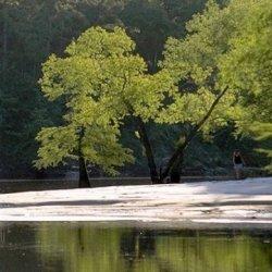 Village Creek State Park - Lumberton, TX - Texas State Parks