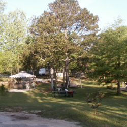 Juniper Lake Camp Ground - Defuniak Springs, FL - RV Parks