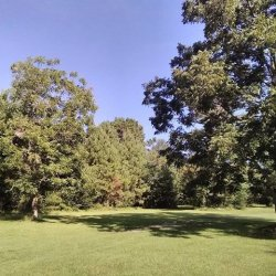 Lacy Rv Park Camp Ground - Carriere, MS - RV Parks