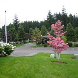 Pheasant Ridge RV Resort - Wilsonville, OR - RV Parks