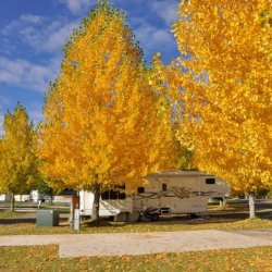 Uncompahgre River Adult RV Park  - Olathe, CO - RV Parks