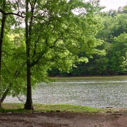 Possum Creek Campground - Soddy Daisy, TN - RV Parks
