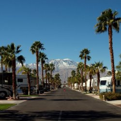 Desert Shadows RV Resort - Cathedral City, CA - RV Parks
