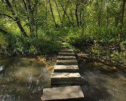 Carley State Park - Plainview, MN - Minnesota State Parks