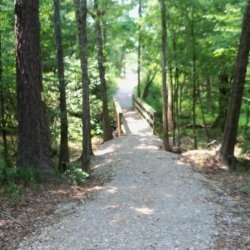 Bogue Chitto State Park - Franklinton, LA - Louisiana State Parks