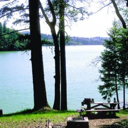 Peninsula Campground - Grass Valley, CA - RV Parks