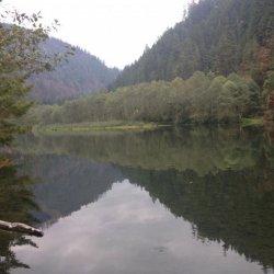 Promontory Park Campground - Estacada, OR - RV Parks