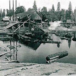 Camp Mather - Groveland, CA - RV Parks