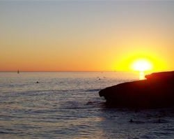 Beach Rv Park - Santa Cruz, CA - RV Parks