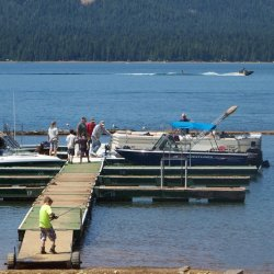 Lake Cove Resort and Marina - Lake Almanor, CA - RV Parks