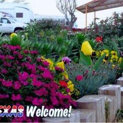 Abilene RV Park - Abilene, TX - RV Parks