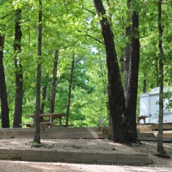Tall Pines Campgrounds - Branson, MO - RV Parks
