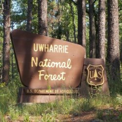 Badin Lake Campground Uwharrie National Forest - Troy, NC - National Parks