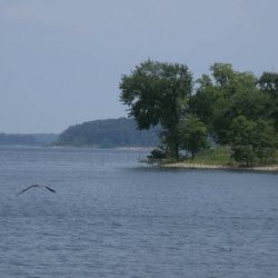 Harry S Truman State Park  - Warsaw, MO - Missouri State Parks