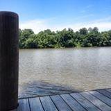 Live Oak Landing - Bay Minette, AL - RV Parks