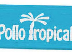 Pollo Tropical - Oldsmar, FL - Restaurants