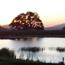 Indian Hill Ranch Campground - Tehachapi, CA - RV Parks
