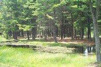 Merlin Lambert County Park - Warrens, WI - County / City Parks