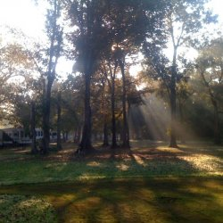 Frenchman's Wilderness Campground - Breaux Bridge, LA - RV Parks