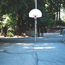 Cotillion Gardens RV Park - Felton, CA - RV Parks