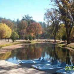 Jellystone RV Park and Camp Resort at Cobb Mountain - Cobb, CA - RV Parks