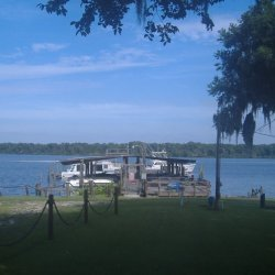 Half Shell Resort - San Mateo, FL - RV Parks