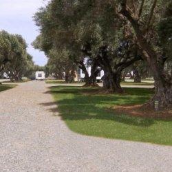 Corning RV Park - Corning, CA - RV Parks