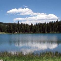 Aspen Trails Campground - Cedaredge, CO - RV Parks