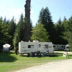 Mystic Forest RV Park - Klamath, CA - RV Parks