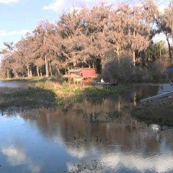 Twin Lakes Fish Camp - Hawthorne, FL - RV Parks