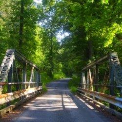 Kings Dominion KOA Camp Wilderness - Doswell, VA - KOA