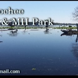 Withlacoochee Backwaters RV & MH Park - Dunnellon, FL - RV Parks
