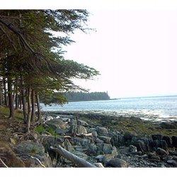 Warren Island State Park - Islesboro, ME - Maine State Parks