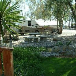 Vineyard Rv Park - Vacaville, CA - RV Parks