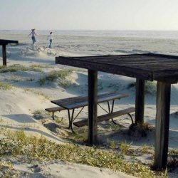 Mustang Island State Park - Port Aransas, TX - Texas State Parks