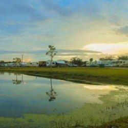Starlite Rv Park - Okeechobee, FL - RV Parks