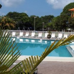 Dunedin RV Resort & The Blue Moon Inn - Dunedin, FL - Sun Resorts