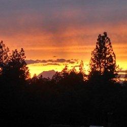 Lassen Pines Rv Resort - Mcarthur, CA - RV Parks