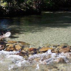 Chalk Creek Campground & RV Park - Nathrop, CO - RV Parks