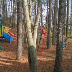 Aquia Pines Campground - Stafford, VA - RV Parks