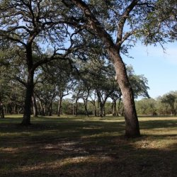 Cascade Caverns - Fair Oaks Ranch, TX - RV Parks