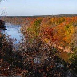 Raven Rock State Park - Lillington, NC - North Carolina State Parks