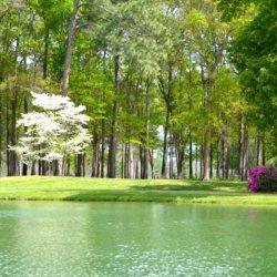Brickyard Plantation Golf Club & RV Park - Americus, GA - RV Parks