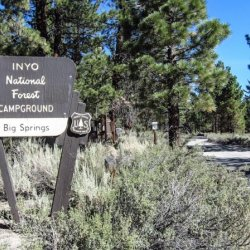 Big Springs Campground - Mammoth Lakes, CA - Free Camping