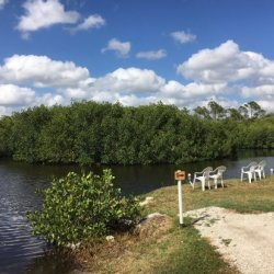 Charlotte Harbor Rv Park - Port Charlotte, FL - RV Parks