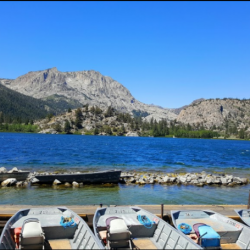 Golden Pine RV Park - June Lake, CA - RV Parks