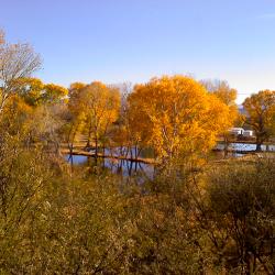 Pato Blanco Lakes Rv Park - Benson, AZ - RV Parks