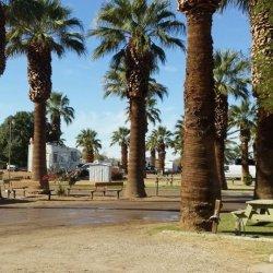 Sans End Rv Park - Winterhaven, CA - RV Parks
